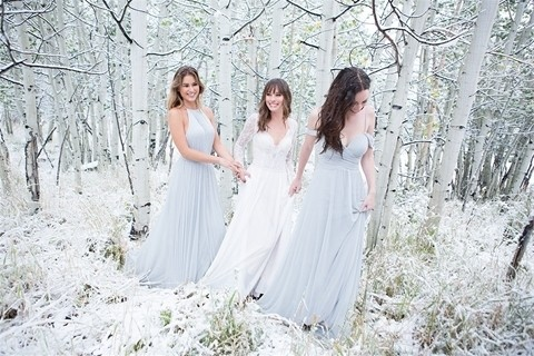 Allure Bridals 9515 with bridesmaids